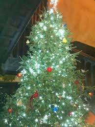 christmas ellwanger rochester patrick barry rochester u0027s first