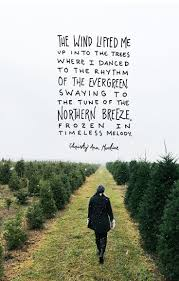 quotes christmas reading best 25 winter quotes ideas on pinterest snow quotes christmas