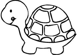 turtles with hard shell round coloring pages for kids f63