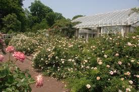 New York Botanical Garden Directions Botanic Garden Nyc Parks