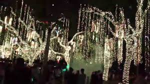 lights christmas ayala triangle s festival of lights christmas 2015
