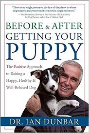 Blu U Before And After Before And After Getting Your Puppy The Positive Approach To