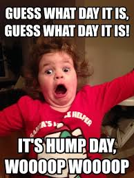 Hump Day Meme Dirty - elegant hump day memes 18 hump day meme funny dirty hump day memes
