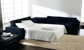 Best Sleeper Sofas Sleeper Sofa Sectional Adrop Me