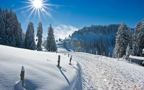 sunny snowy mountains wallpapers white mountain road full with snow good morning winter day