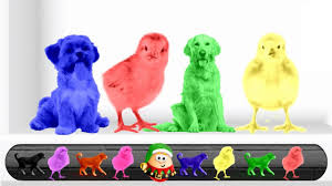 funny colors learn colors with dog xylophone funny baby colors videos for kids