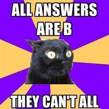 Anxiety Cat Meme - anxiety cat by zeapawak meme center