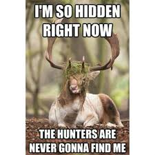 Funny Deer Memes - 30 most funniest hunting meme pictures and images
