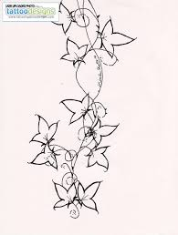 wonderful ivy vine tattoo design real photo pictures images and
