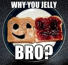 You Jelly Bro Meme - you jelly bro fun stuff pinterest bro