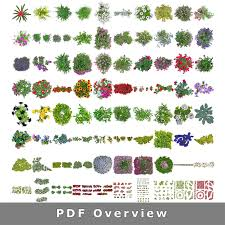 plan view top view flowers cutout plan view images png for garden and