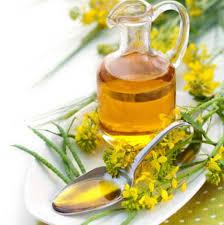 huile cuisine huile de colza informations nutritionnelles bienfaits santé