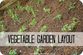 best vegetable garden layout gardening ideas