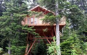 chambre d hote cabane dans les arbres location cabane dans les arbres n 4596 cabane les marmottes à