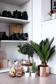 interior pinterest inspired room decor ideas