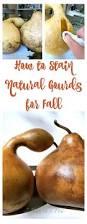 best 25 gourd crafts ideas on pinterest gourds gourd art and gourd