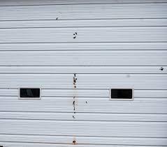 Overhead Shed Door by Overhead Shed Door Btca Info Examples Doors Designs Ideas