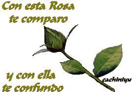 imagenes para enamorar con flores imágenes gifs de flores de amor gifs de amor