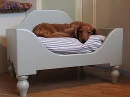 home accessories lovely interior with elevated dog bed in white