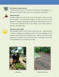 What Type Of Soil For Vegetable Garden - starting or enhancing a vegetable garden