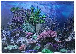 amazon com biobubble 3d coral aquarium background 20 gal amazon com biobubble 3d coral aquarium background 20 gal multicolor pet supplies