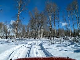 Wyoming nature activities images Ten best winter activities in jackson hole wyoming garrett on jpg