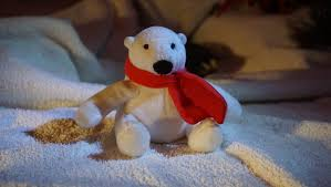 free images decoration christmas material white bear teddy