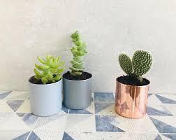copper cactus pot etsy