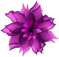 decorative flower decorative flower purple transparent png clip art gallery
