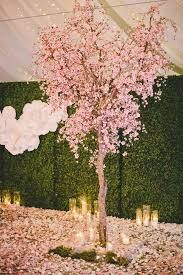 best 25 blossom trees ideas on cherry blossoms