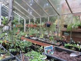 Hobby Greenhouses Greenhouse On The Brain My Sweet Cottage