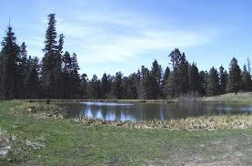 New Mexico lakes images Carson national forest trout lakes jpg