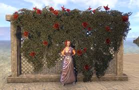 eso fashion wedding flower trellis