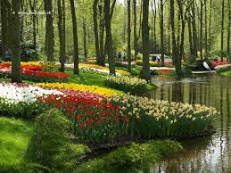 keukenhof flower gardens keukenhof urban park in netherlands thousand wonders