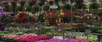 meder u0027s garden center