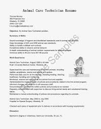 Veterinarian Resume Examples Resume For Bus Technician