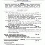 Chrono Functional Resume Sample by Hybrid Combination The Third Type Of Resume Format Resume