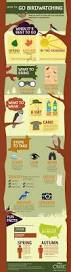 18 best images about backyard bird watching on pinterest the