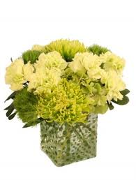 Flower Delivery Syracuse Ny - green envy arrangement in syracuse ny james flowers
