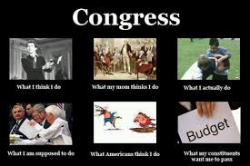 Congress Meme - congress what i really do meme pinterest meme
