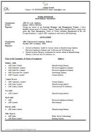How To Pad A Resume How To Make A Resume Examples Professional Gray Free Resume