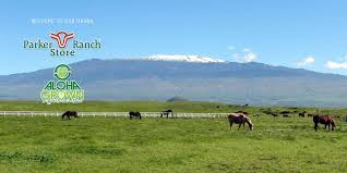 parker ranch store aloha grown