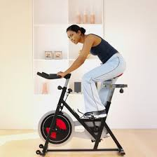 Comfortable Exercise Bike What Are The Proper Seat Heights For An Exercise Bike Healthy