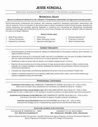 functional executive functional format resume sle beautiful combination template