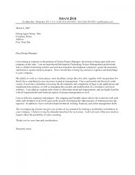 cover letter project management cover letter sample project