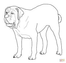 english mastiff coloring page free printable coloring pages