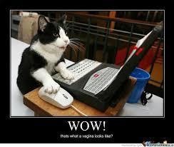 Cat Laptop Meme - laptop meme 28 images computer reaction meme gif image memes at