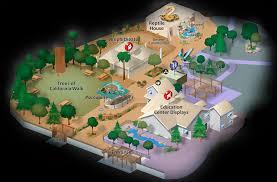 Hummingbird Map Zoo Map Calm Zoo