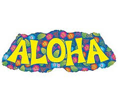Hawaian Decorations Amazon Com Beach Luau Aloha Hawaiian Tropical Birthday Party
