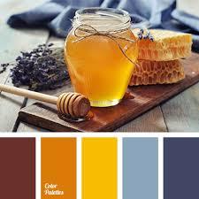 Blue Orange Color Scheme Brown And Orange Color Palette Ideas